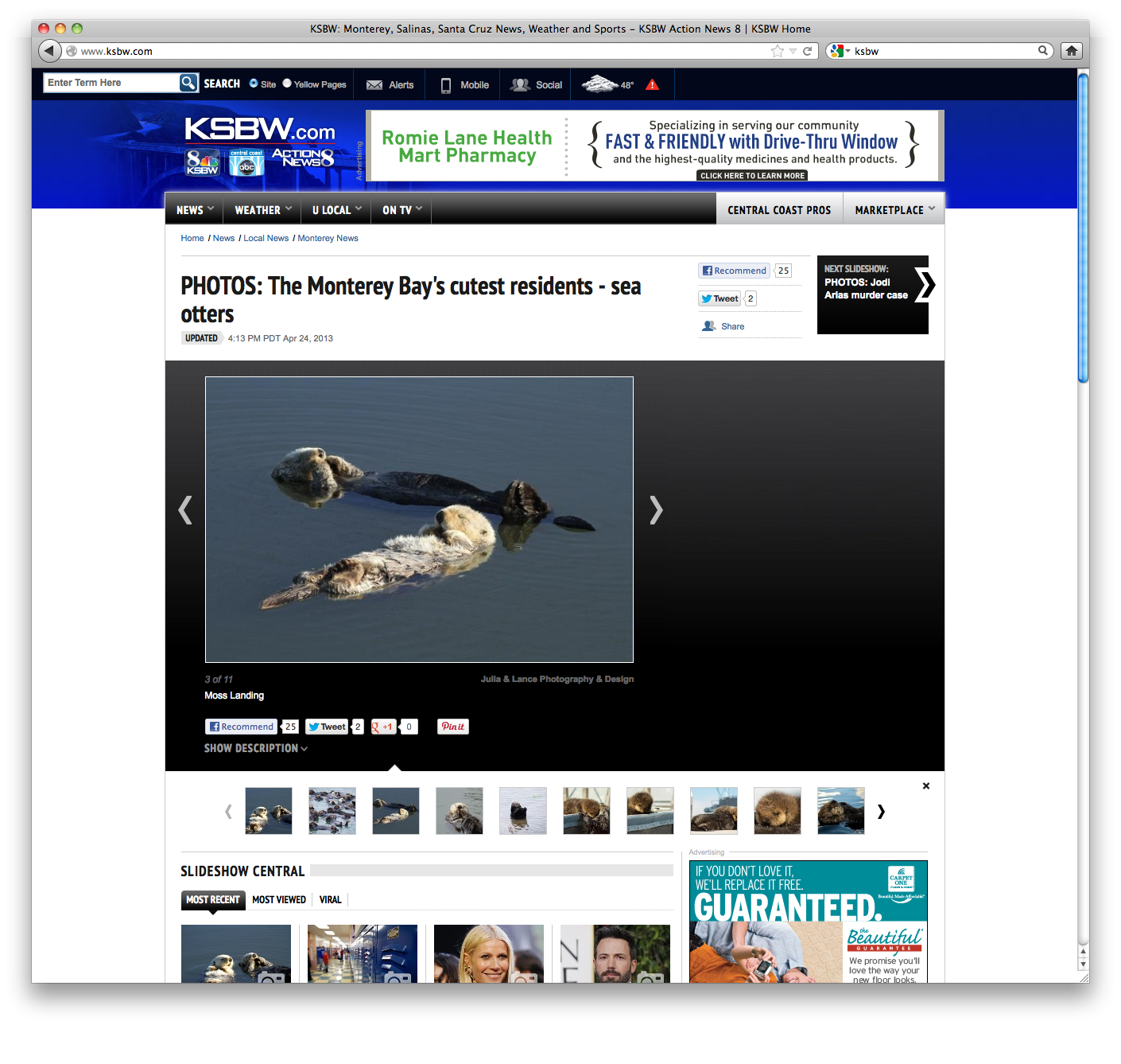 KSBW_Otters_3.png