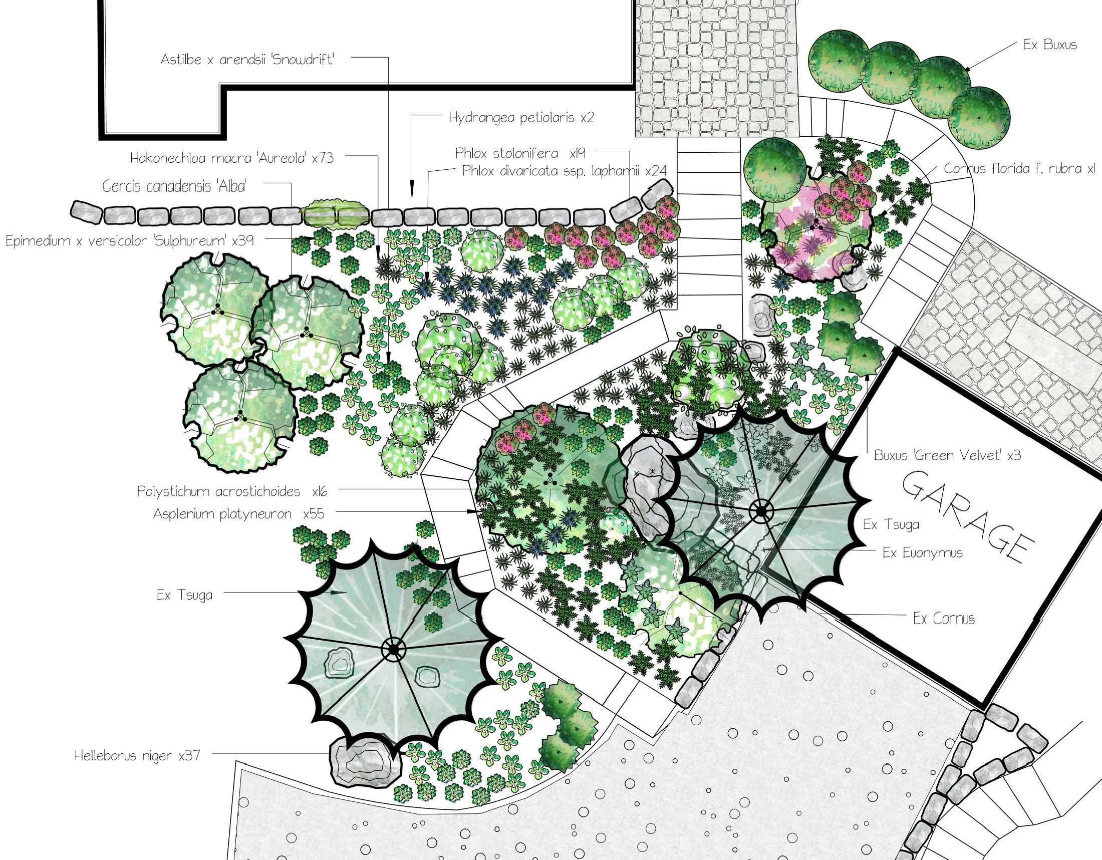 Detailed planting and installation plans