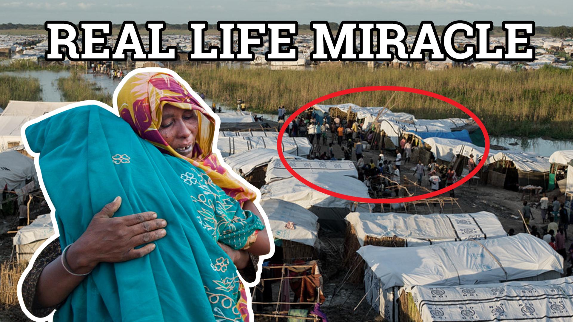 Real_Miracles.jpg