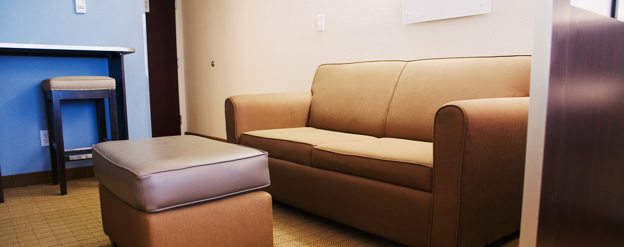 Pull-out Sofa in Suite