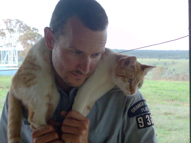 The OC Cat Herder
