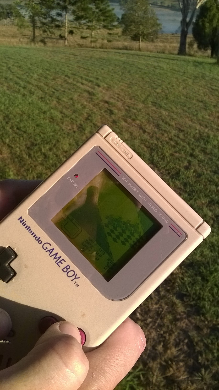 Nintendo forced millions of gamers out into the sun, in order to see the non-backlit screens of the Game Boy.