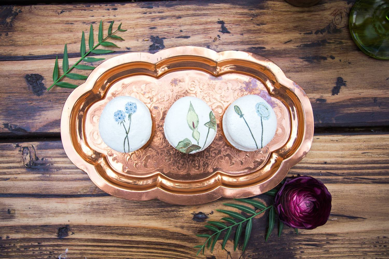 FloraandFauna061_WEB.jpg