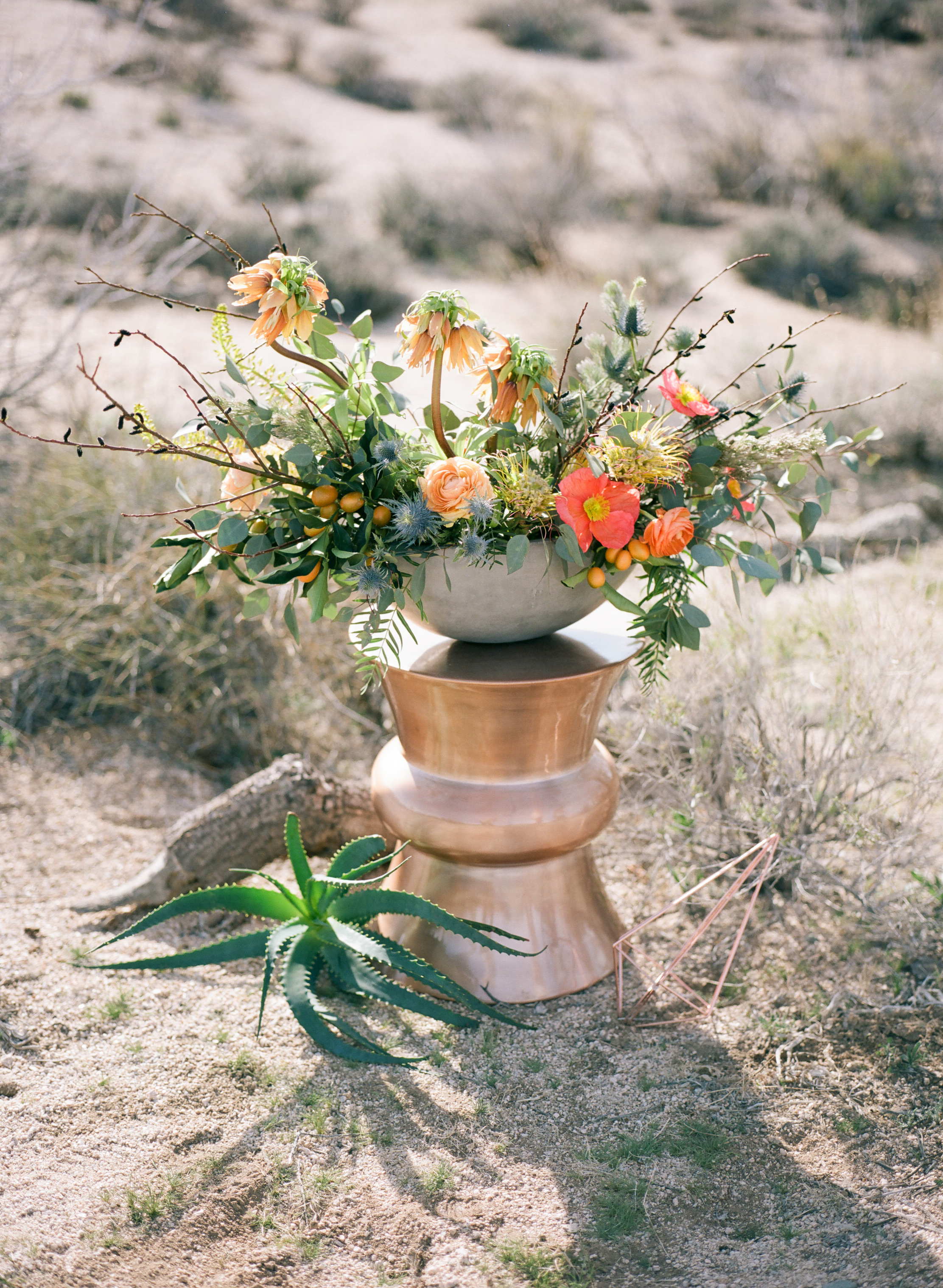 Joshua Tree Elopement-5.jpg