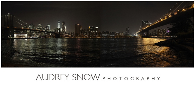audreysnow-photography-brooklyn-engagement-session_1138.jpg