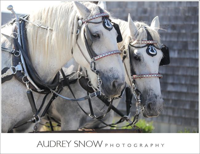 audreysnow-martha-clara-wedding-photography_1219.jpg