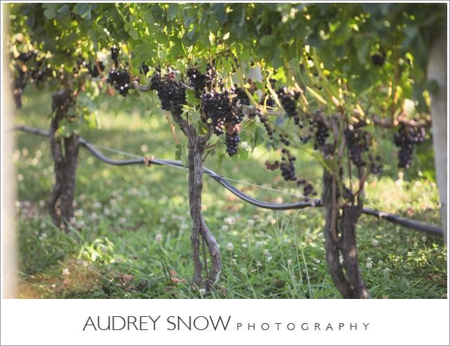 audreysnow-martha-clara-wedding-photography_1245.jpg