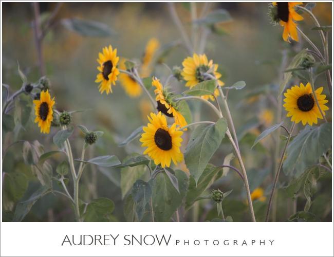 audreysnow-martha-clara-wedding-photography_1332.jpg