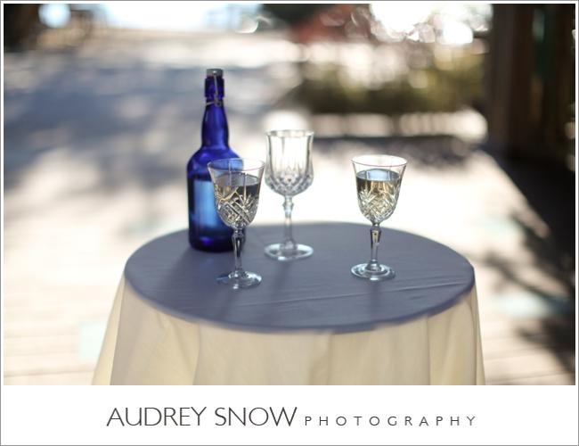 audreysnow-photography-marie-selby-wedding_1509.jpg