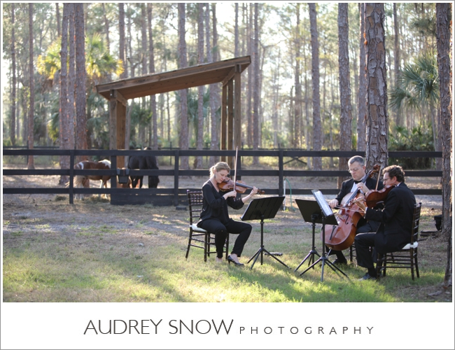 audreysnow-photography-naples-barn-wedding_1867.jpg