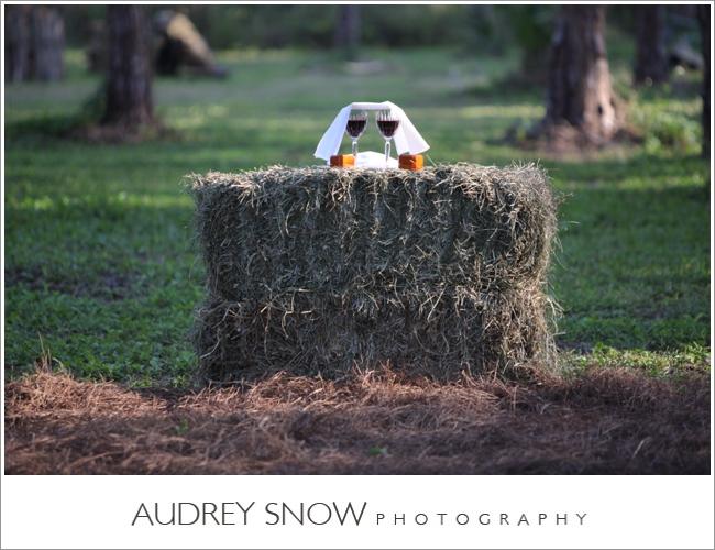 audreysnow-photography-naples-barn-wedding_1868.jpg