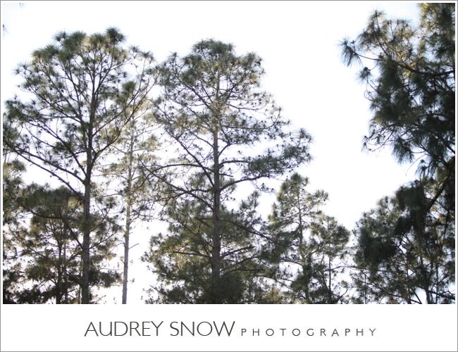audreysnow-photography-naples-barn-wedding_1869.jpg