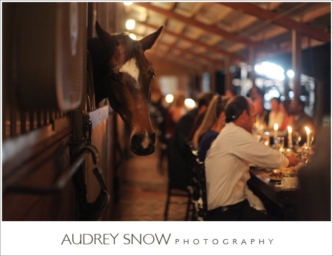 audreysnow-photography-naples-barn-wedding_1913.jpg
