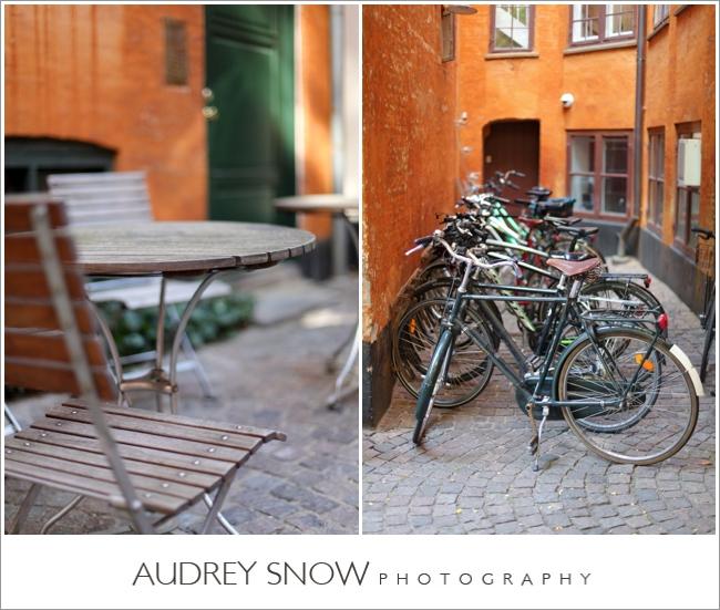 audreysnow-photography-copenhagen_2428.jpg