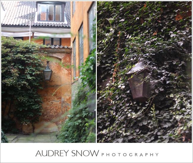 audreysnow-photography-copenhagen_2427.jpg