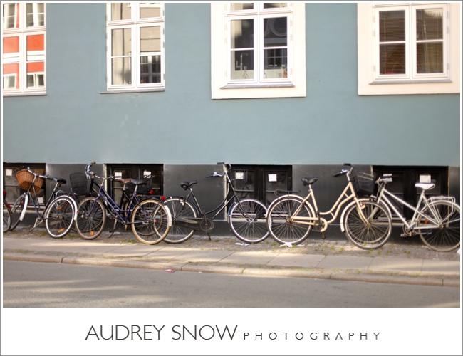 audreysnow-photography-copenhagen_2436.jpg