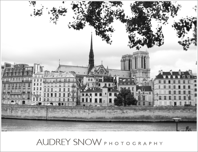 audreysnow-photography-paris_2489.jpg
