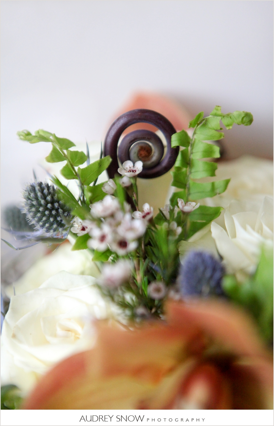 audreysnow-photography-naples-botanical-garden_3553.jpg