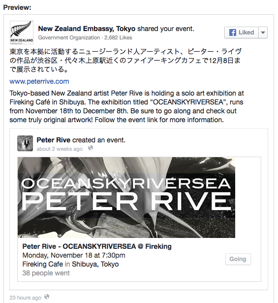 Peter Rive - NZ Embassy Support.png