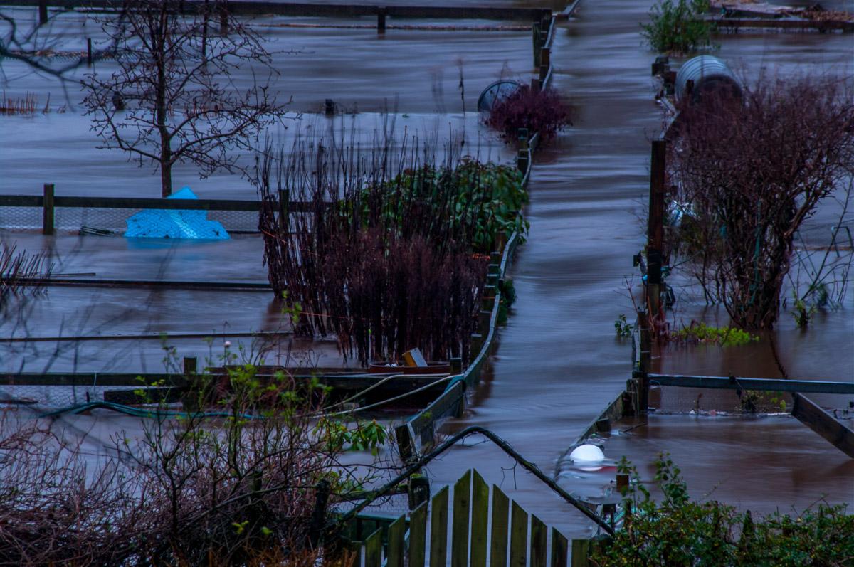 Tay_River_Flood_TBrauer_2016 (28 of 37).jpg