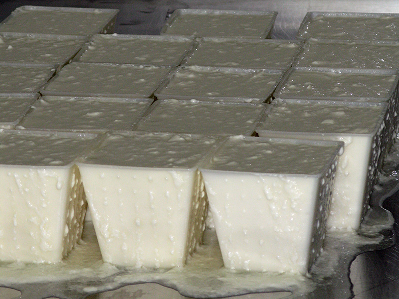Hand ladelled curds draining in moulds.