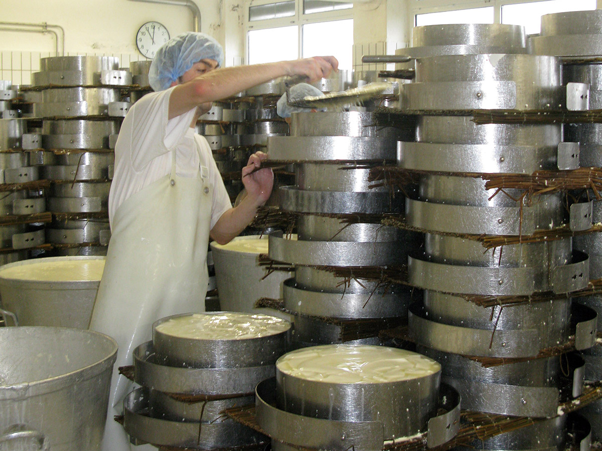 Stacking moulds is possible due to the reed mats used to drain liquid away from the cheese