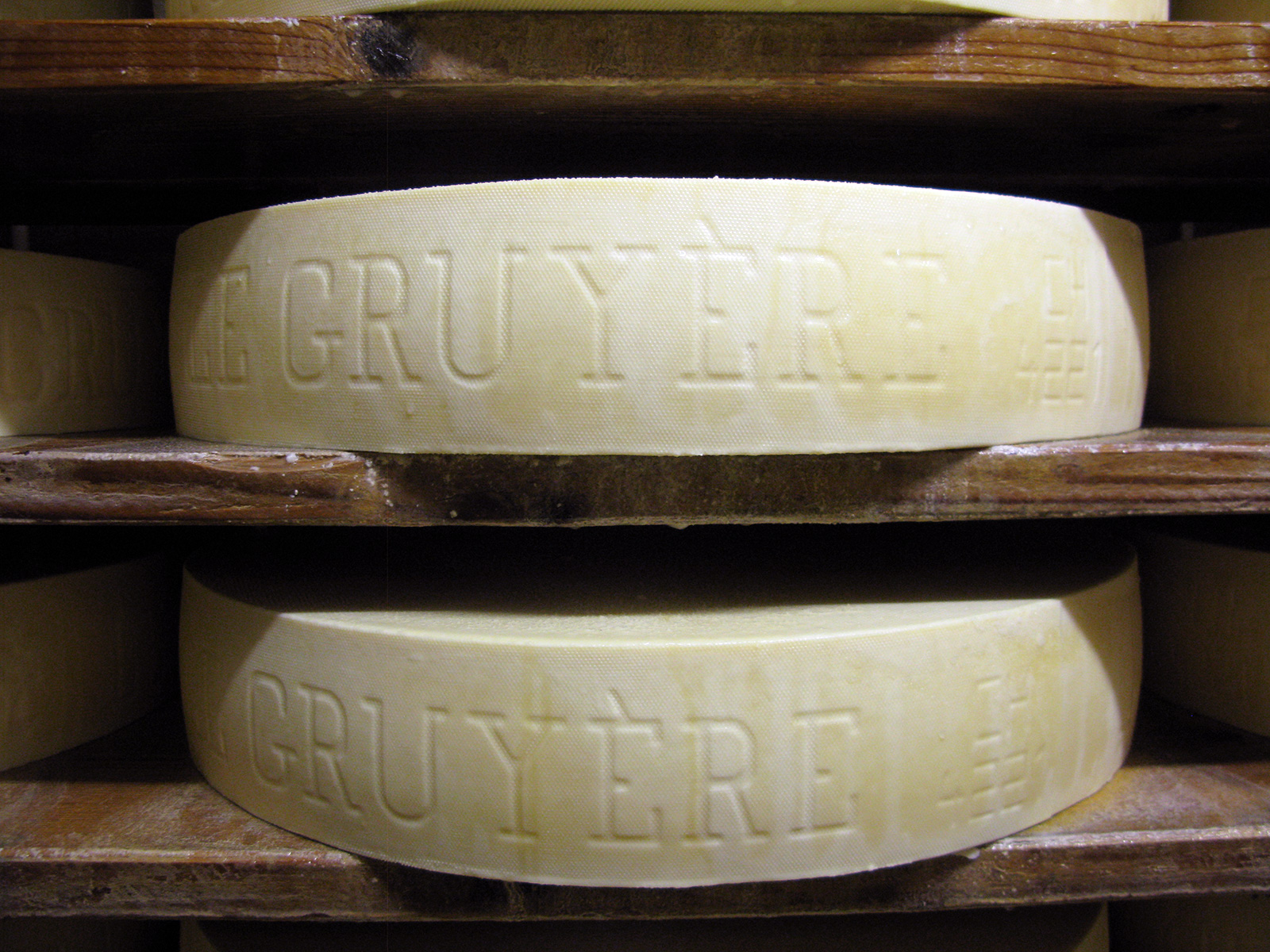 Young cheeses maturing.