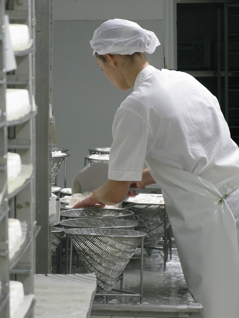 Ladling curds into cone shapes moulds