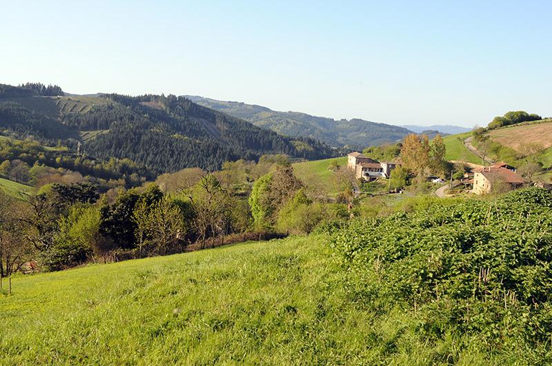 The Beaujolais mountains