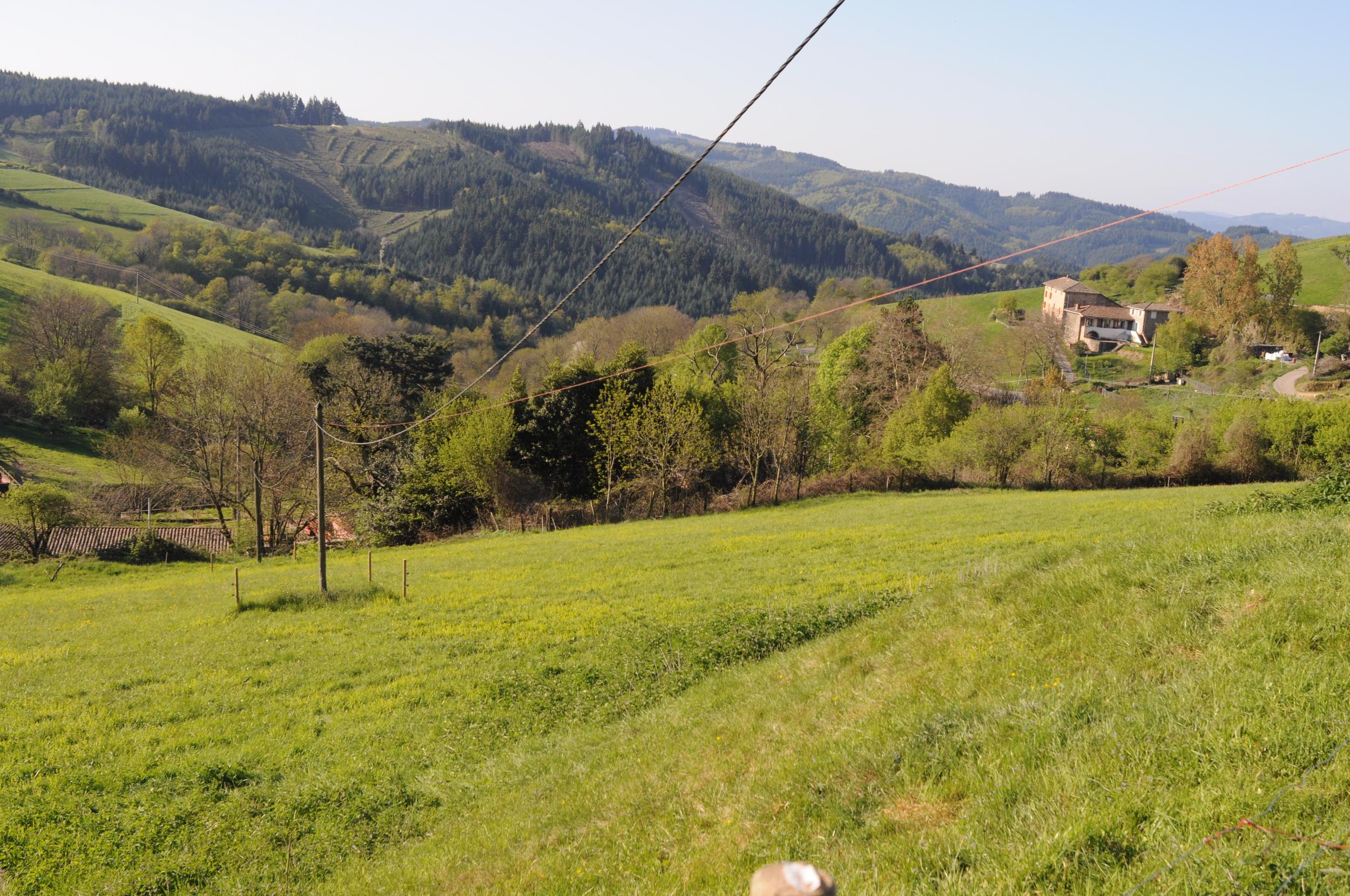 The Beaujolais hills