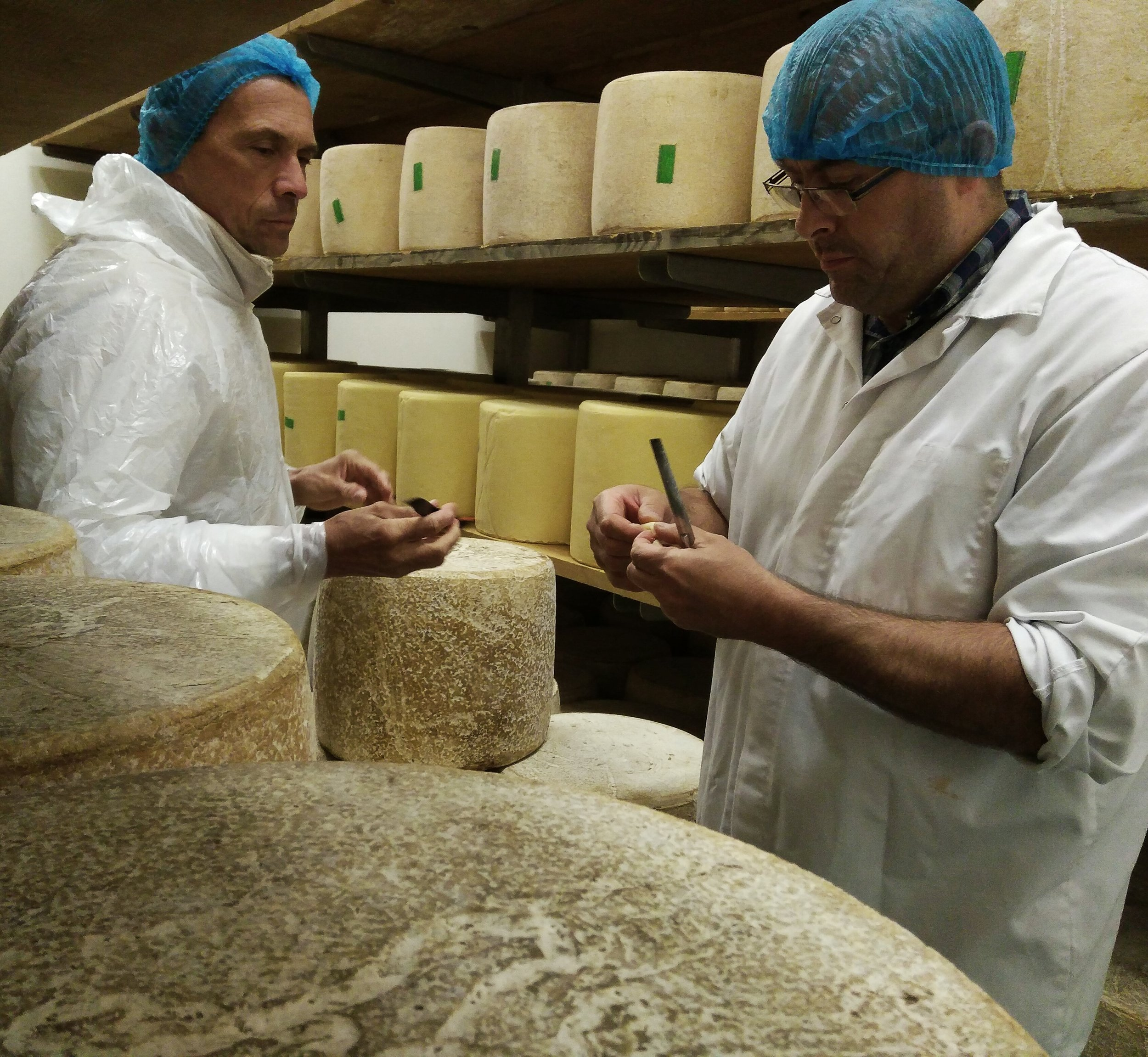 Selecting Cantal, Auvergne.