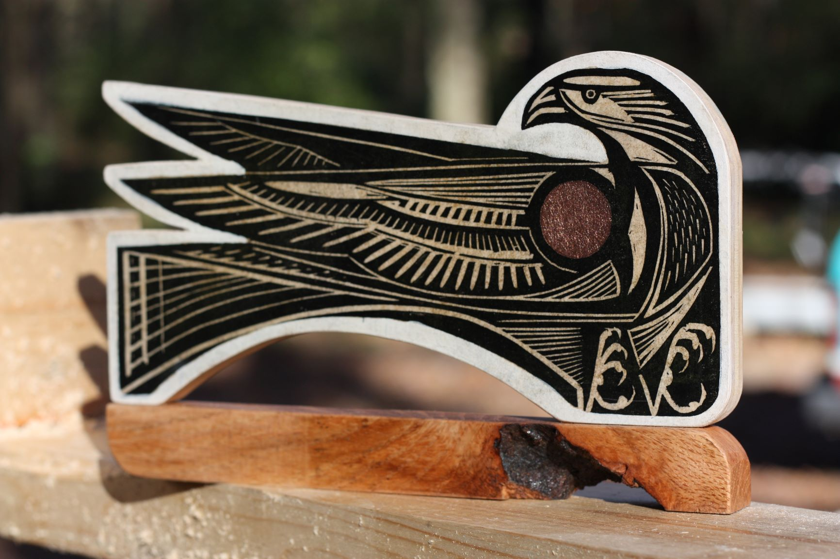 steelhawk1.JPG