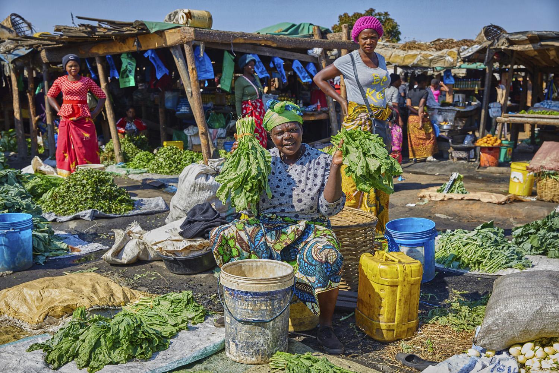Zambia_andrews&braddy©201708.jpg