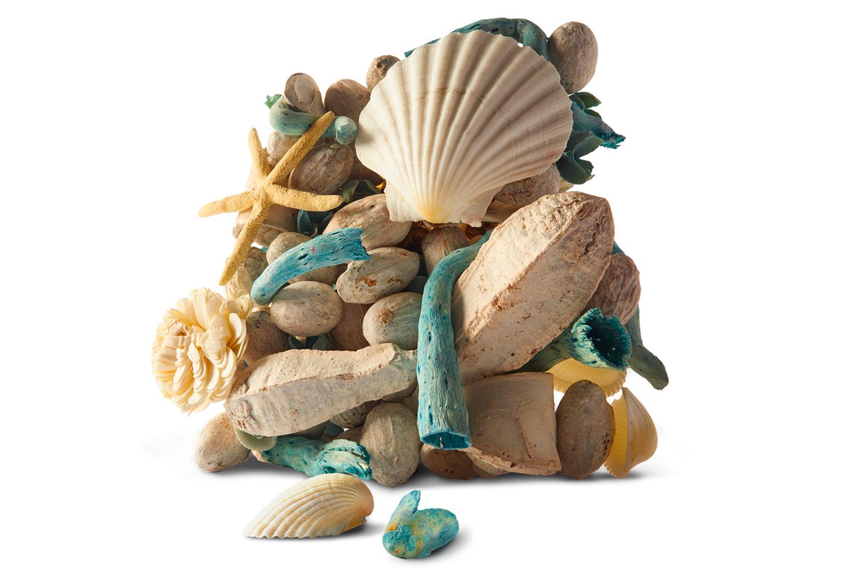 blue shell.jpg