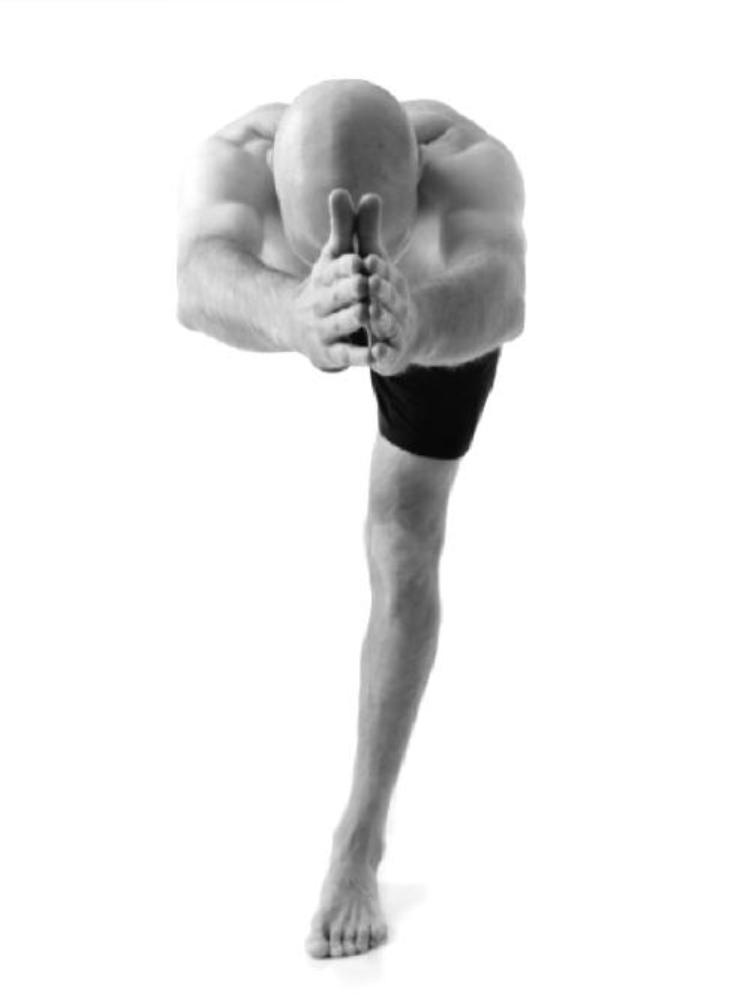 YogaSteve.jpg