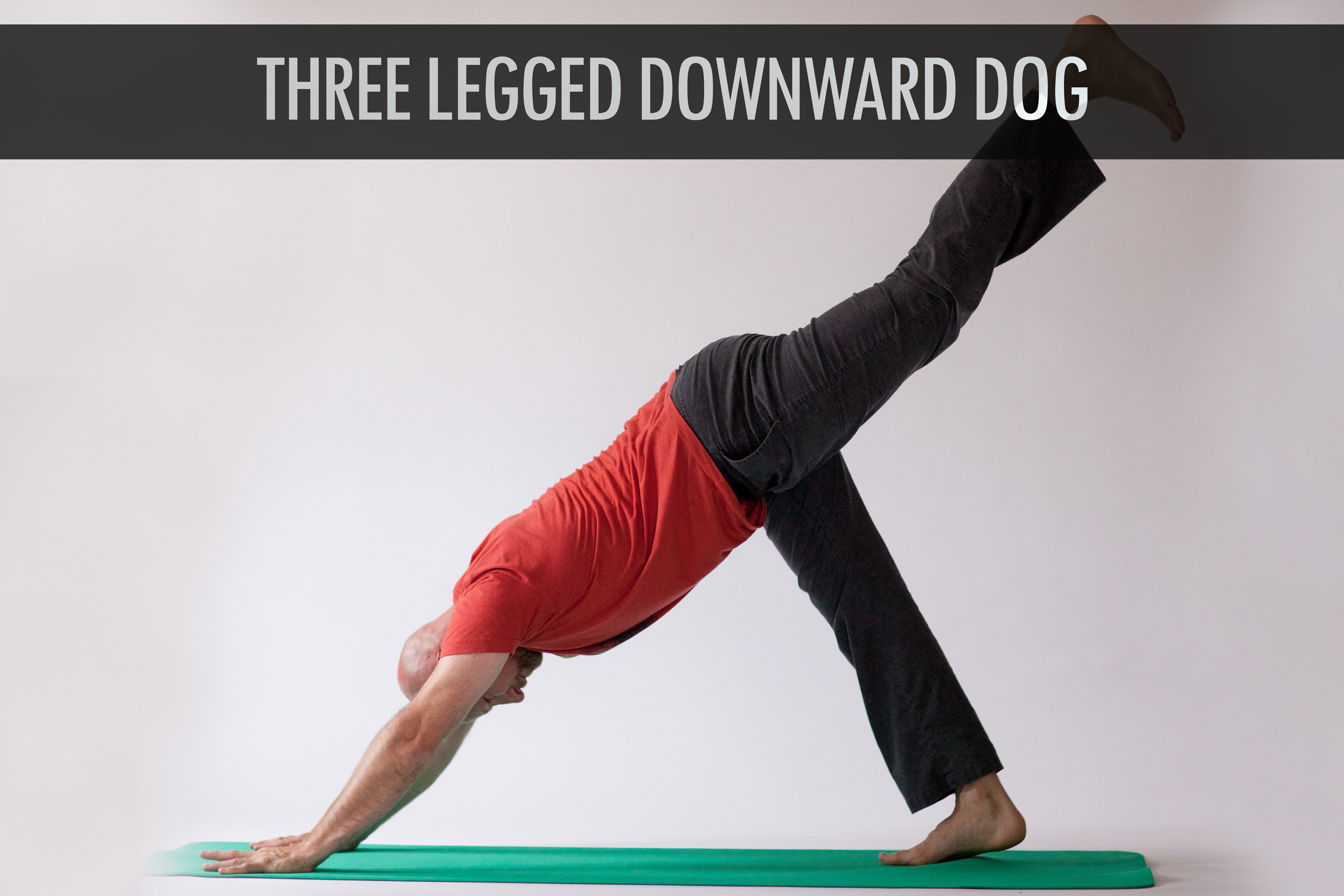 Three Legged Downward Dog.jpg