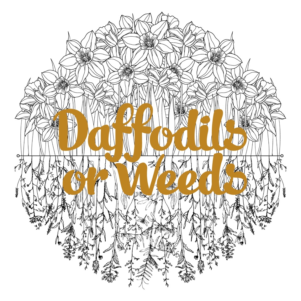 Kate Fuller - Daffodils or Weeds - iTunes Image.jpeg