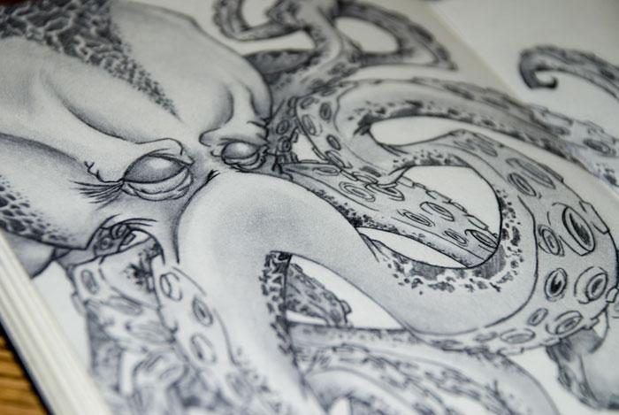 horiOctopus_03.jpg