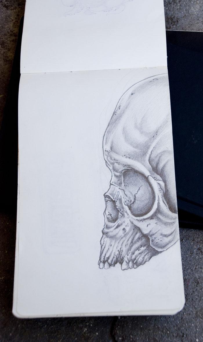 skullProfile_02.jpg