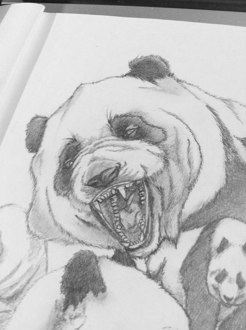 pandaSketch_02.jpg