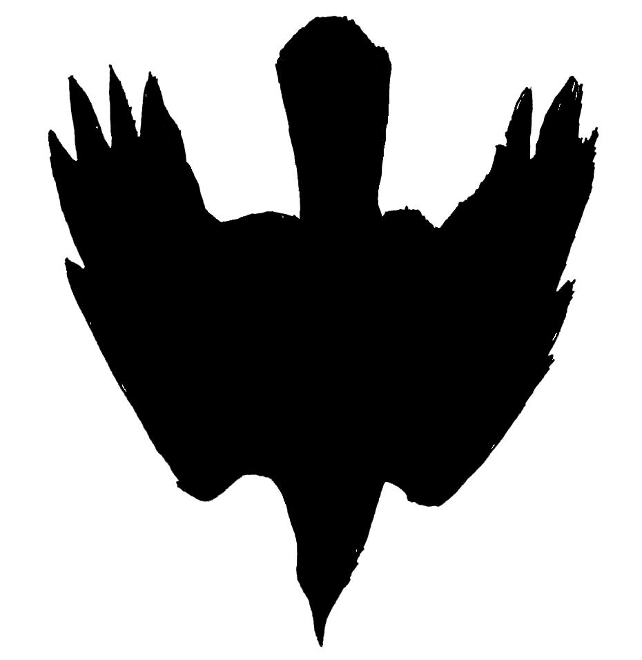 misner & smith bird.jpg