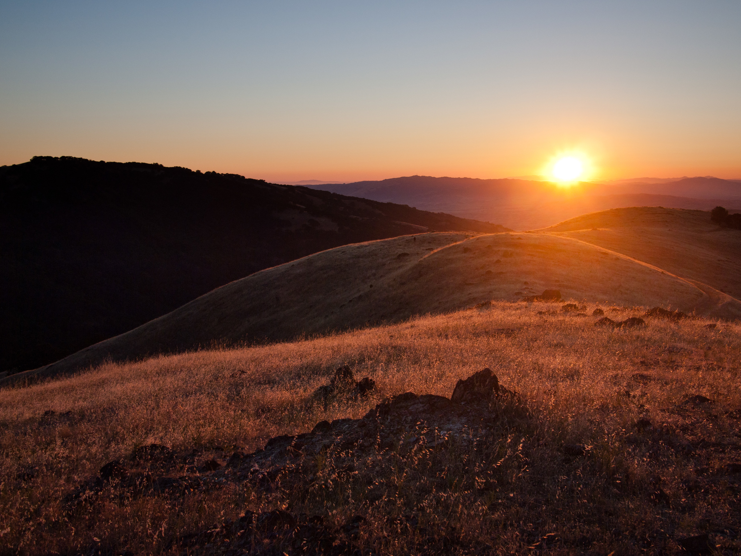 Ohlone Wilderness.jpg