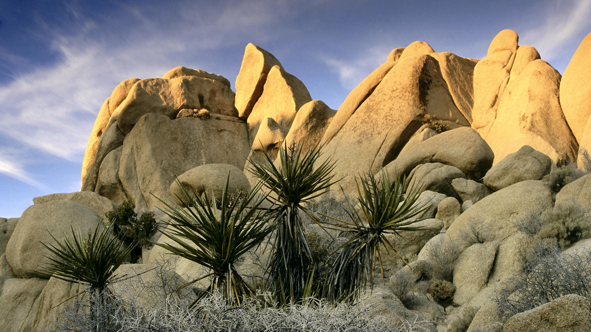 SAANO ADVENTURES - JTREE - Rock Formation.jpg