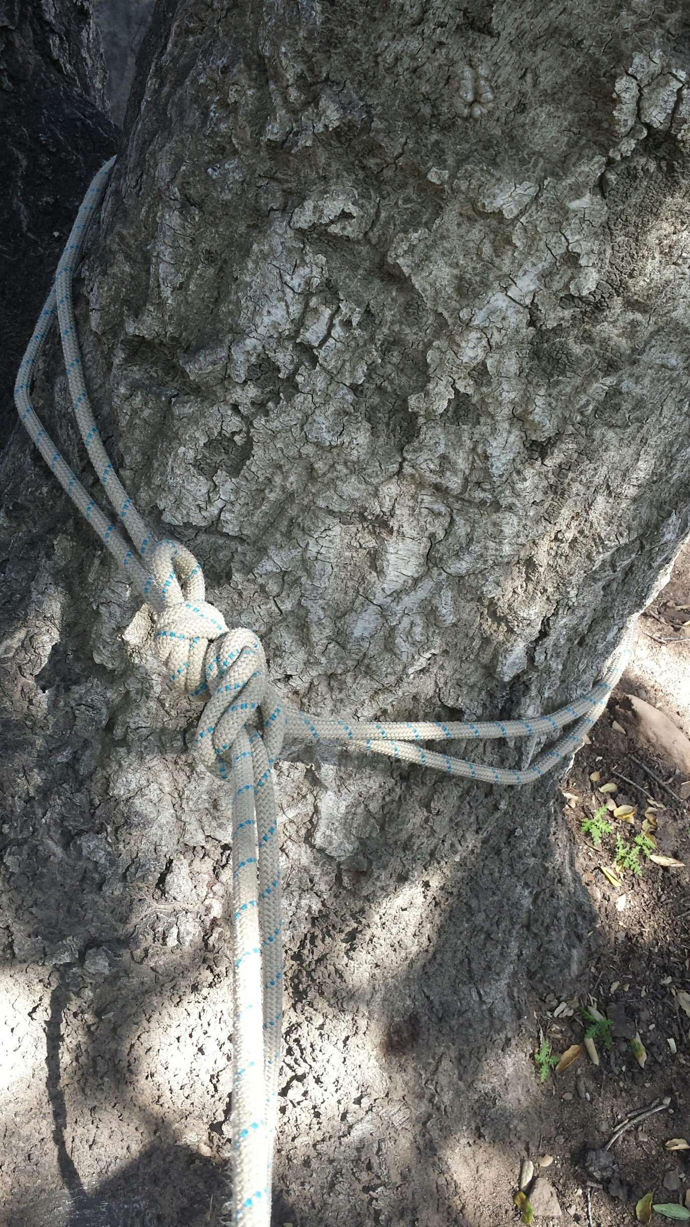 MICRO VIEW - Anchor piece 1 is built using a bowline on a bite. This allows for two strands of rope to come out of the master point of the bowline. One strand for the anchor builder to attach themselves to as a safety line, and the other to use as one side of the anchor. The bowline is finished with an overhand or double fisherman's knot.