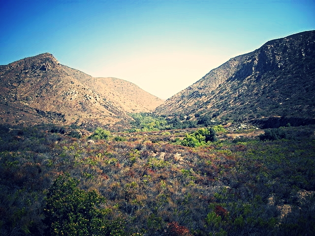 MISSION GORGE (SD)