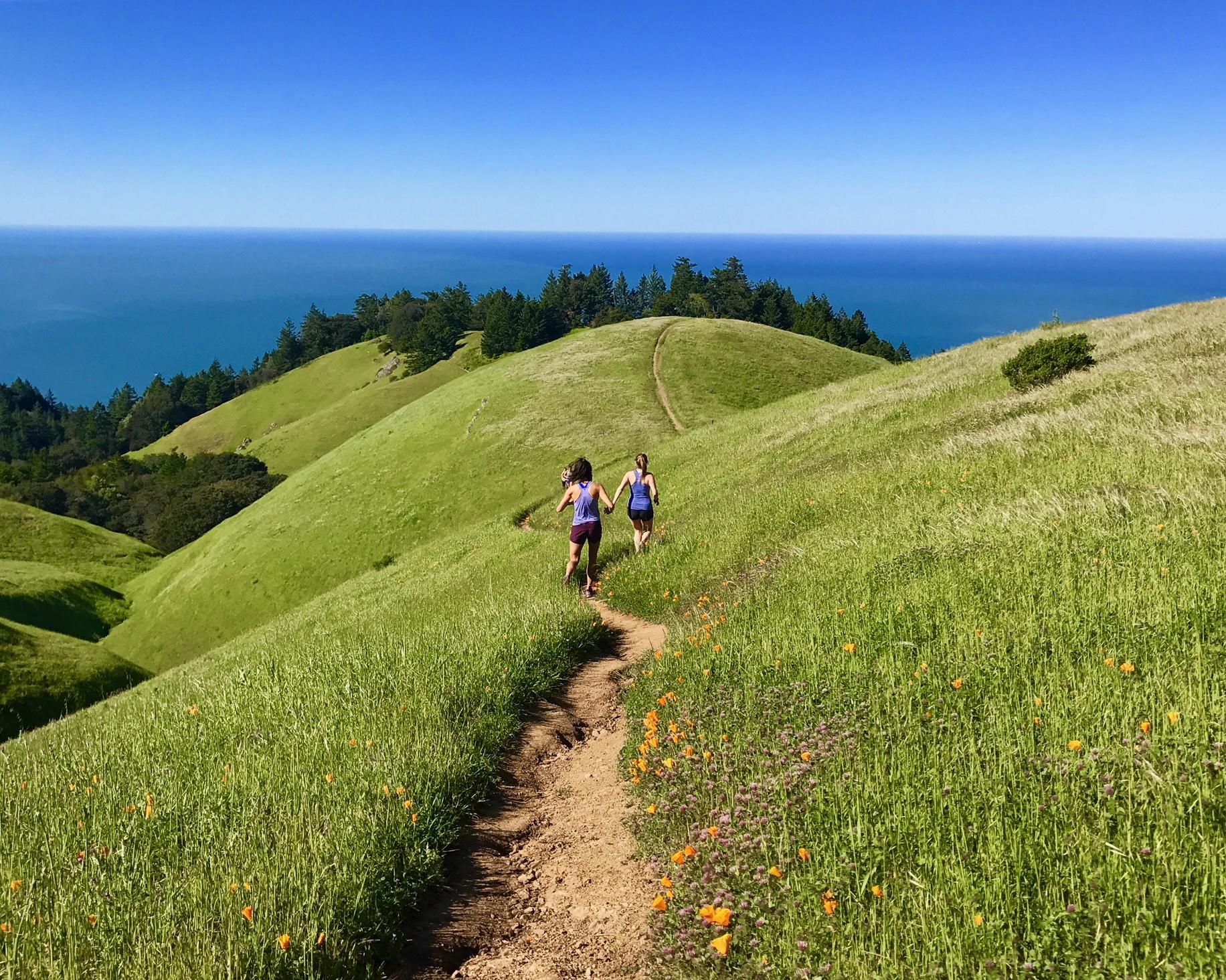 Champagne-Trail-Running-SF-Headlands.jpeg