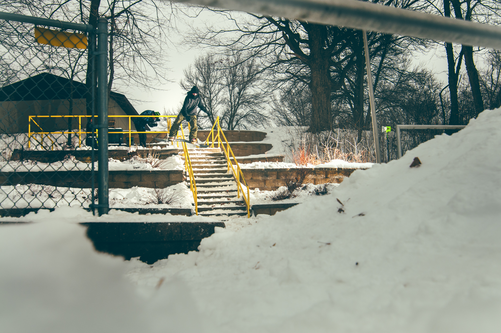 20140104_Bald_Egal_0183-Edit.jpg