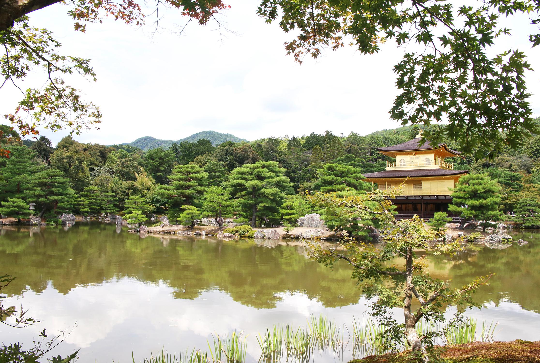 golden palace.jpg