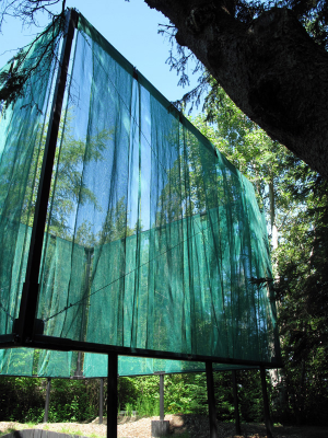 'forest . SQUARE . sky'  Installation project by Suresh Perera with Julie Charbonneau, 2009