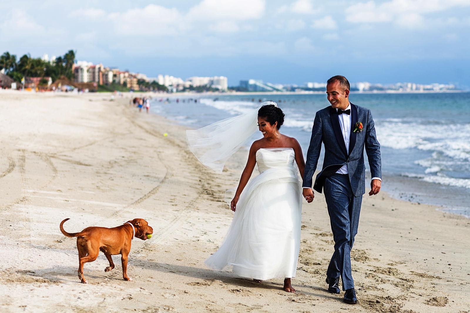Pareja en el dia de su boda paseando por la playa de Bucerias, Nayarit, un perro acercandose les trae una pelota. Eder Acevedo fotografo de bodas Bucerias